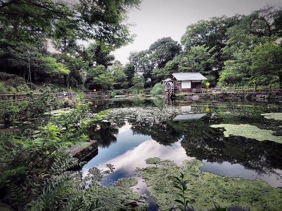 Nabeshima Shoto Park Photo