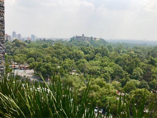 Wyndham Garden Mexico City Polanco: photo1.jpg