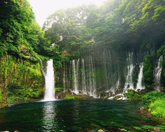 Shiraito Falls : 白糸の滝(富士宮市)