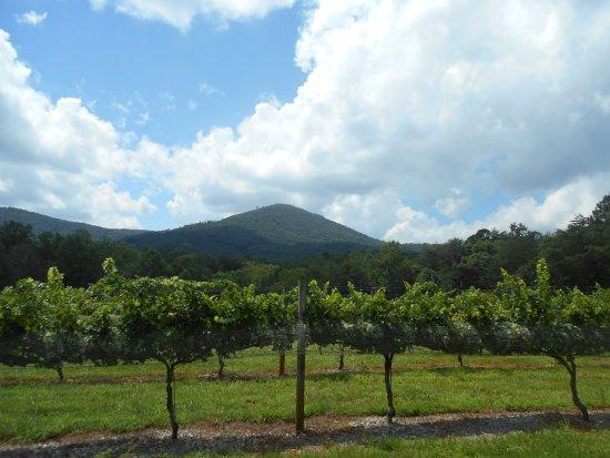 Sharp Mountain Vineyards