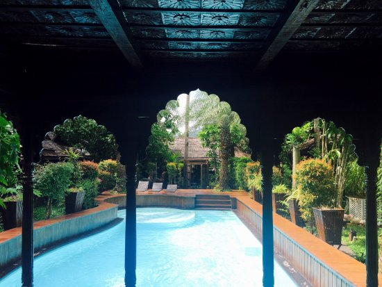 Baan Habeebee Resort : Pool