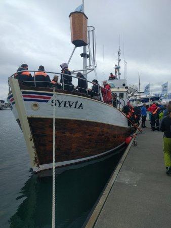 Husavik, Ισλανδία: IMG_20170714_130024_large.jpg