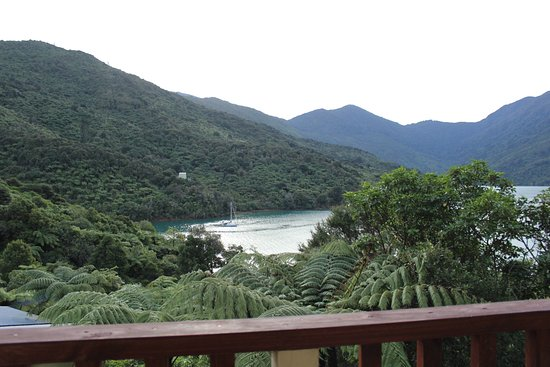 Endeavour Inlet, New Zealand: View from the balcony