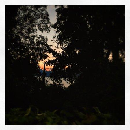 Trattoria Agli Olivi : photo5.jpg
