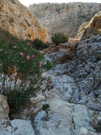 Akrotiri, Greece: IMG_20170723_075243_large.jpg