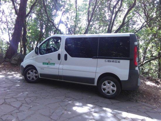 Hermigua, Spain: Taxi con capacidad para 8 pasajeros más el conductor