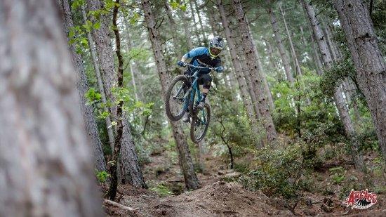Le Bois Vert Bikepark
