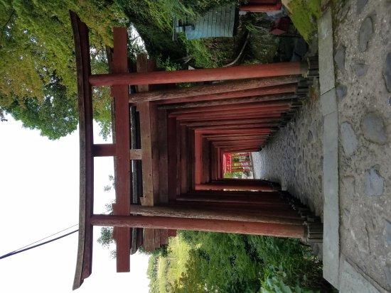 Kashima, Japan: 20170723_172230_large.jpg