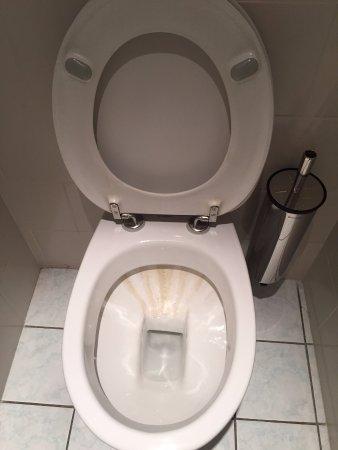La Tour-de-Salvagny, Франция: Calcified scum on the toilet bowl