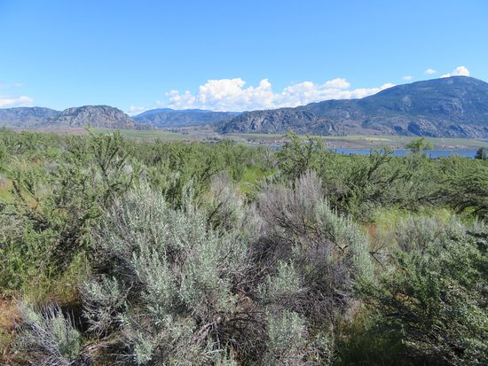 Osoyoos, Canada: The view from the desert centre