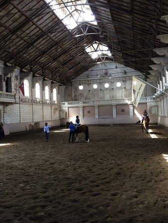 Levend Paardenmuseum De Hollandsche Manege Foto