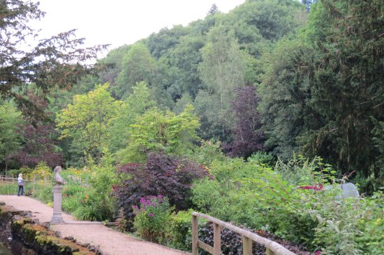 Bonsall, UK: Garden view