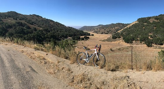 Santa Barbara Wine Country Cycling Tours - Day Tours: My trusty Specialized Roubaix SL4 rental from Dr. J's Bicycle Shop on the Drum Canyon Rd., Solva