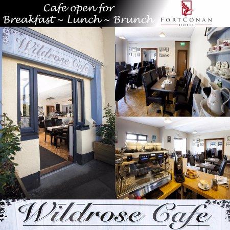 Duncannon, Ireland: Wild Rose Cafe