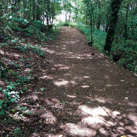 Landstuhl, Germany: The hiking trail
