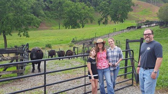 Hayesville, NC: Farm tour