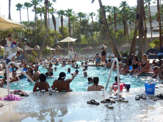 Treasure Island Pool Picture Of Treasure Island Ti Hotel Casino Las Vegas Tripadvisor