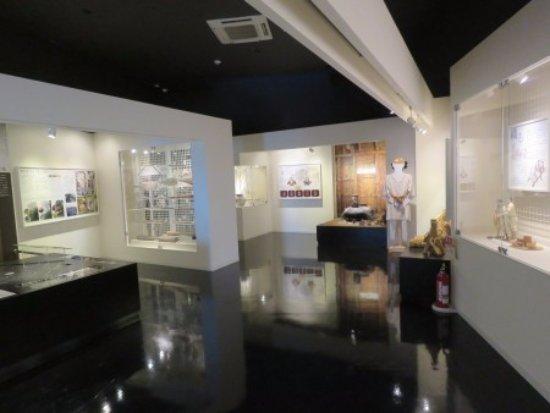 Tendo, Japonya: 有料展示室
