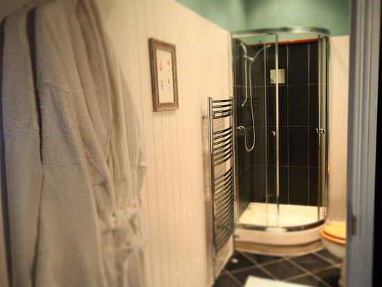 Axminster, UK: En-suite shower room in 'Portland'