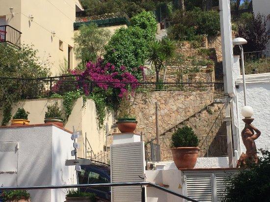 Hotel La Caleta de Tamariu: View from hotel garden