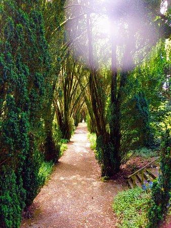 Par, UK: Path