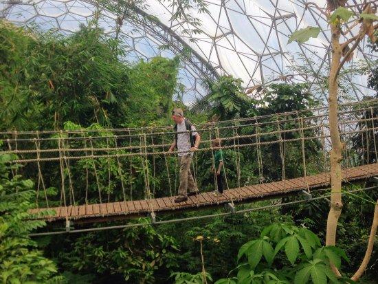 Par, UK: Eden Project close by