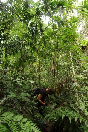 Pak Chong, Thailand: Door de jungle lopen