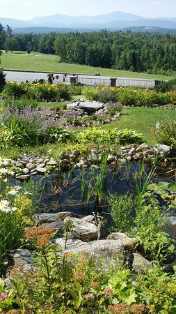 Whitefield, NH: garden, pond & waterfall, beside dining patio