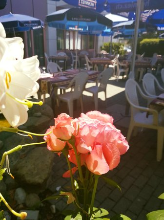 Morges, Svizzera: Speedy Gonzalez