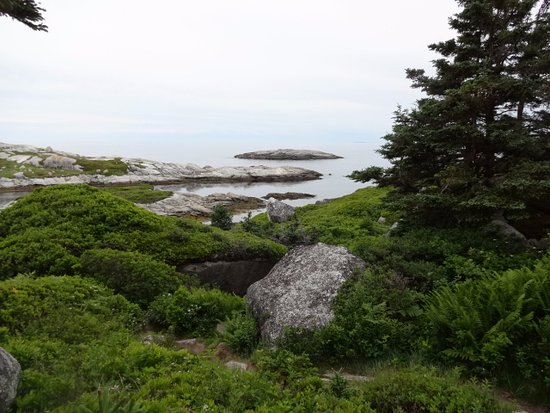 West Dover, Canada: Polly's Cove