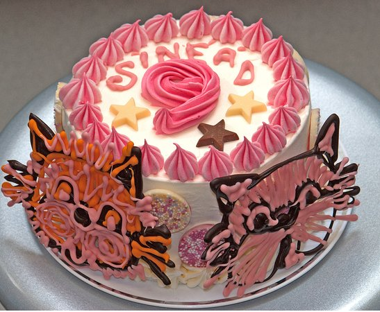 Stonehaven, UK : ice cream cake for a cat lover