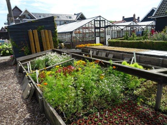 Tuinbouwmuseum Historische Tuin Aalsmeer