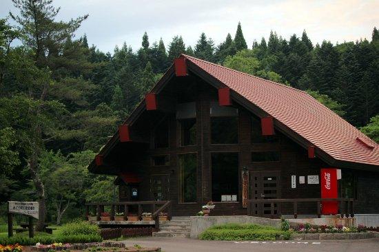 Oshamanbe park