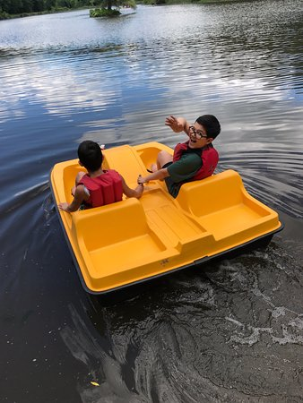 Halcottsville, NY: There's plenty of kayaks, but this looked fun too!