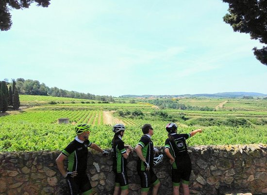 Vilafranca del Penedes, Spain: Cycling Holidays in the outskirts of Barcelona