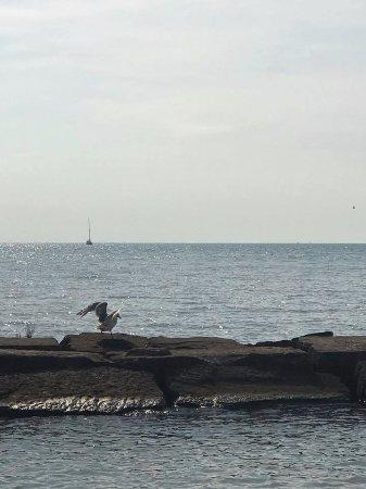 Vermilion, OH: Lake Erie
