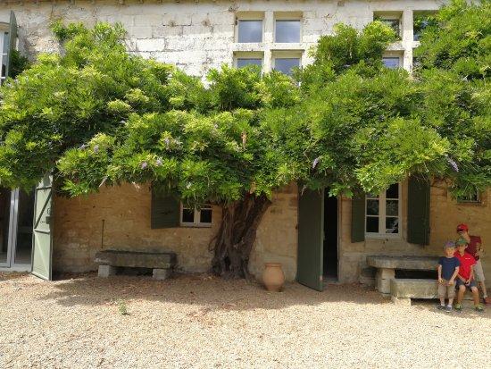 Beaucaire, Francia: Mas des Tourelles