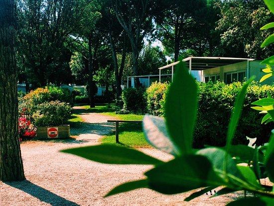 Jesolo Camping Village - Villaggio Turistico Adriatico