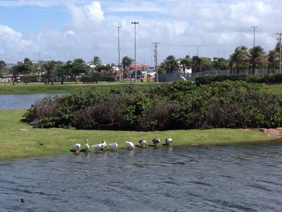 Atalaia, AL: Lagoa dos patos em Aracaju-Se