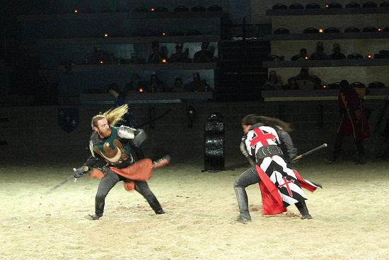 Medieval Times: Loved the fighting it looked very real