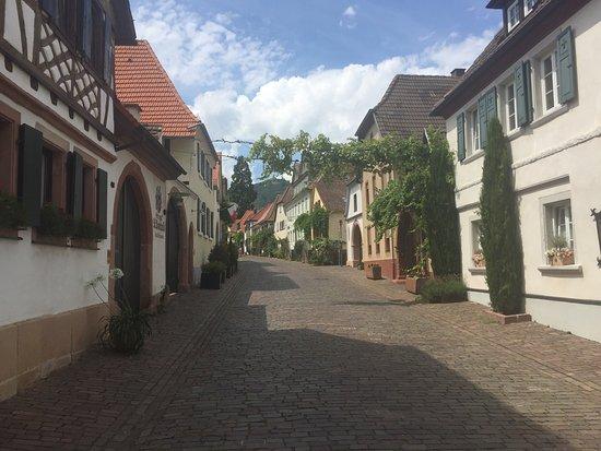 Photo2jpg Bild Von Alter Kastanienhof Rhodt Unter Rietburg