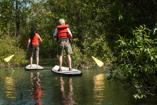 Golden, Canada: SUP in the tranquil wetlands
