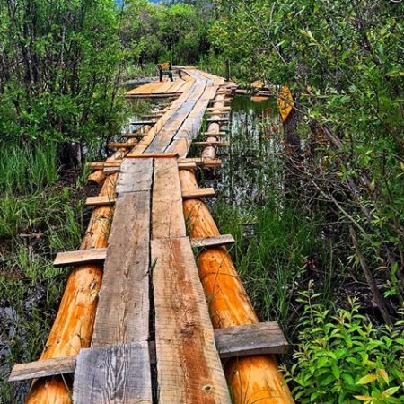 Golden, Καναδάς: wander & explore our boardwalks
