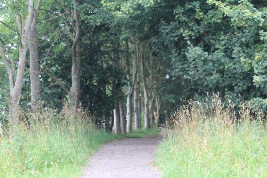 Preston, UK: A lovely Walk