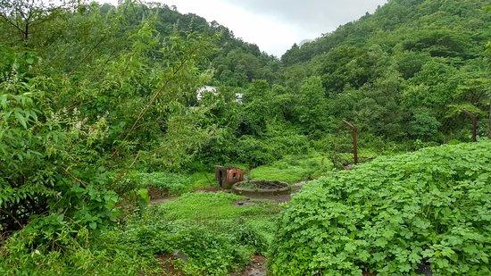 Neral, الهند: start to trek