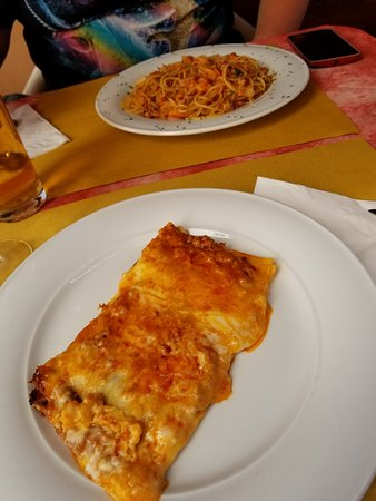 Martellago, Italien: My portion of lasagna and the pasta dish my son selected.
