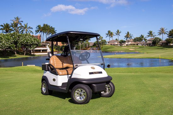 Brand new Club Car golf carts with premium leather seating