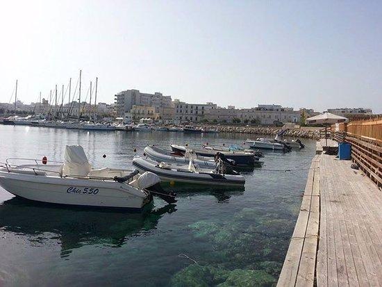 Italmare Noleggio Barche e Gommoni