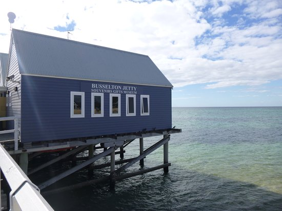 The Dive Shed Busselton Australia Top Tips Before You