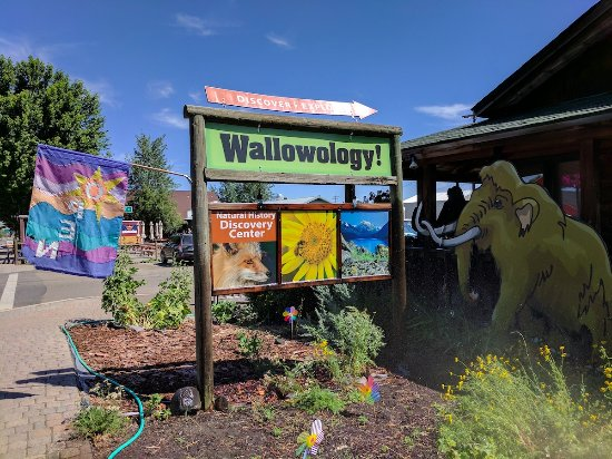 ‪Wallowology Natural History Discovery Center‬